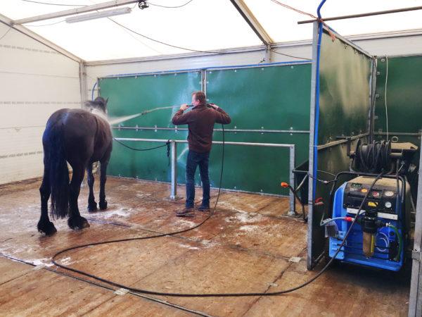 paard-en-therm-1-bewerkt